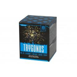 Trygonus