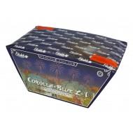 Corolla-Blue Z-1